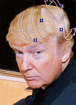 ドナルド・トランプの髪型.jpg